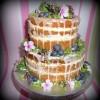 Naked birthday cake